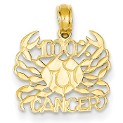 14K Yellow Gold Zodiac 100% Cancer Crab Pendant